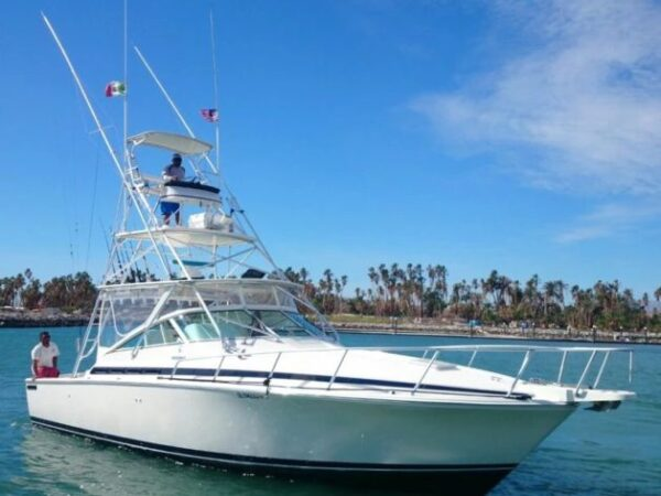 Los Barriles Fishing Charters