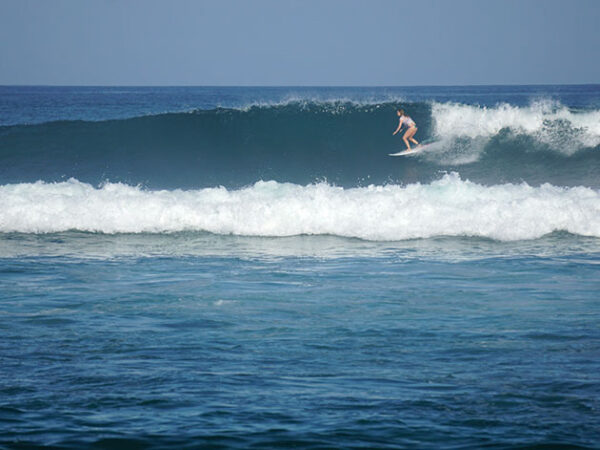 East Cape Baja Surfing