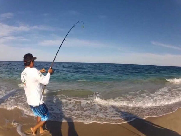 East Cape Surf Fishing