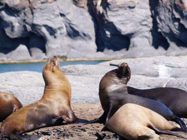 Baja California Tourist Attractions
