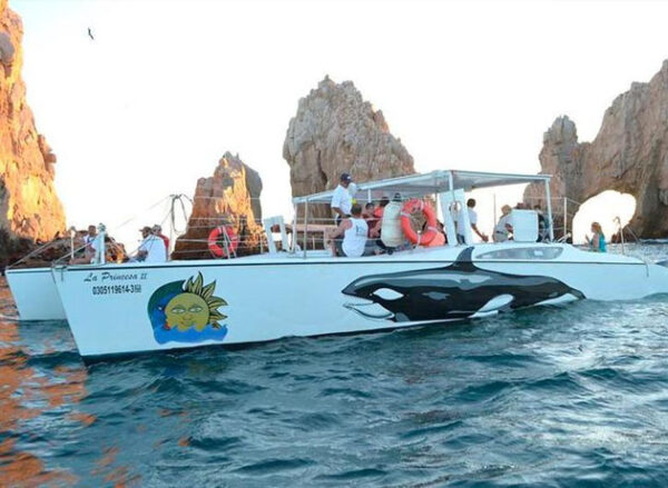 Cabo Boat Party
